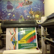 xcite media harare zimbabwe businessprofiles portfolio